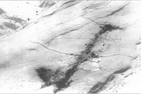 ан-12 кандагар
